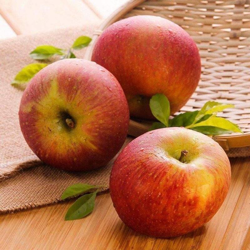 小涼山蘋果