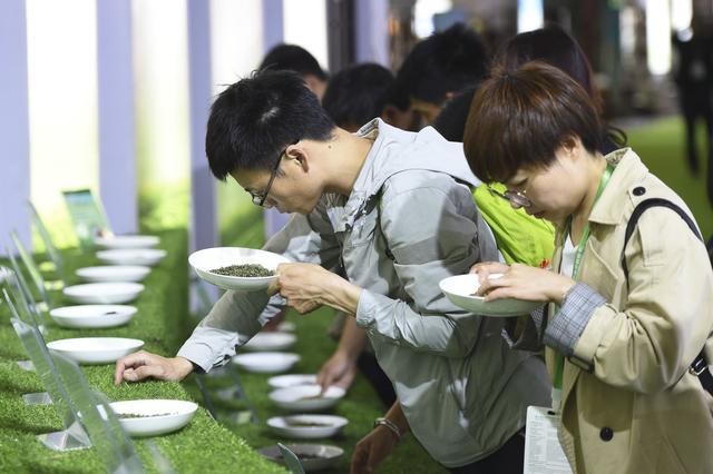 买的茶叶不知道是好是坏,不清楚品质高低?对比3个特征就明白了