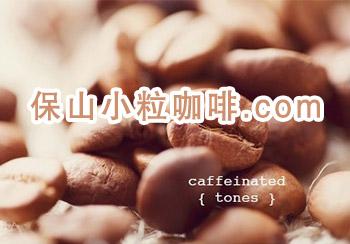 高黎贡咖啡加工厂中文域名注册成功