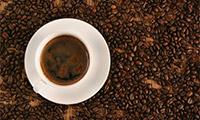 世界各地咖啡文化